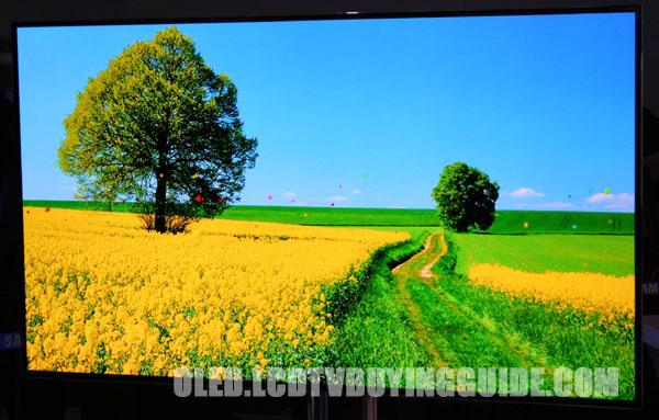 Samsung KN55F9500 OLED TV